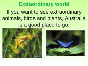 Extraordinary world If you want to see extraordinary animals, birds and plants,