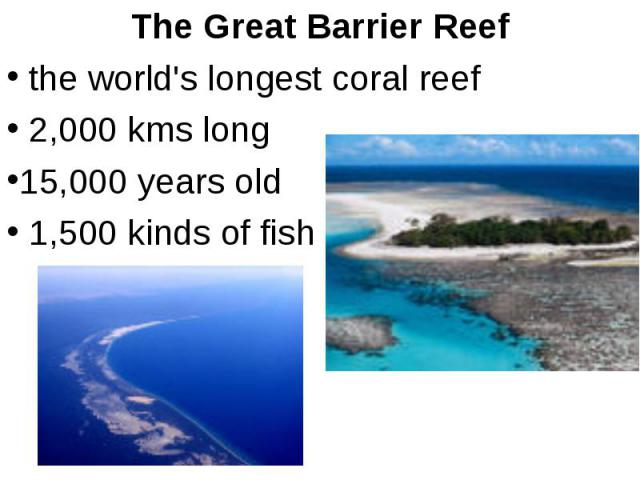 The Great Barrier Reef the world's longest coral reef 2,000 kms long 15,000 years old 1,500 kinds of fish