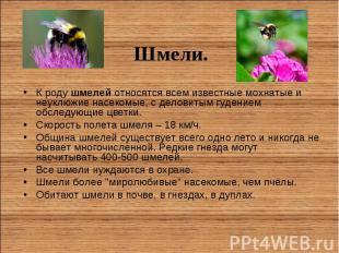 К родушмелей относятся всем известные мохнатые и неуклюжие насекомые, с де