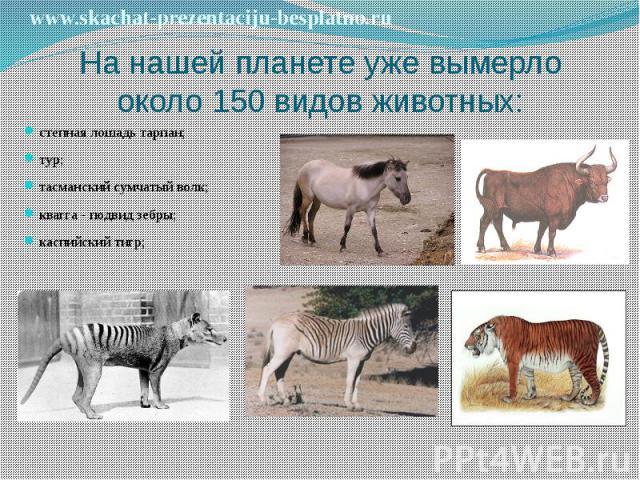 На нашей планете уже вымерло около 150 видов животных: степная лошадь тарпан; тур; тасманский сумчатый волк; квагга - подвид зебры; каспийский тигр;