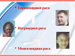 Европеоидная раса Европеоидная раса Негроидная раса Монголоидная раса