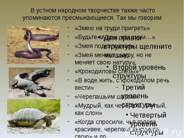 В устном народном творчестве также часто упоминаются пресмыкающиеся. Так мы говорим: «Змею на груди пригреть» «Будьте мудры, как змии…» «Змея подколодная» «Змея меняет шкуру, но не меняет свою натуру» «Крокодиловы слёзы» «В воде жить, с крокодилом р…