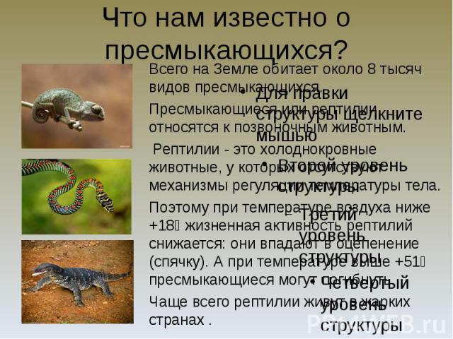 Что нам известно о пресмыкающихся? Всего на Земле обитает около 8 тысяч видов пресмыкающихся. Пресмыкающиеся или рептилии относятся к позвоночным животным. Рептилии - это холоднокровные животные, у которых отсутствуют механизмы регуляции температуры…