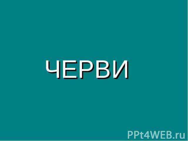 ЧЕРВИ