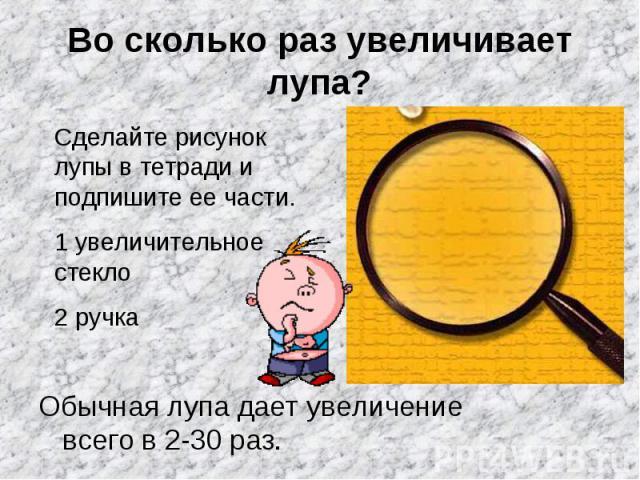 Во сколько раз увеличивает лупа? Обычная лупа дает увеличение всего в 2-30 раз.