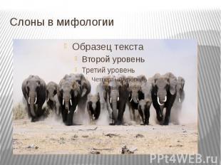 Слоны в мифологии