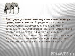 Благодаря долгожительству слон символизирует преодоление смерти. В средневековых