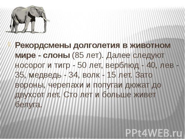 Рекордсмены долголетия в животном мире - слоны (85 лет). Далее следуют носорог и тигр - 50 лет, верблюд - 40, лев - 35, медведь - 34, волк - 15 лет. Зато вороны, черепахи и попугаи дюжат до двухсот лет. Сто лет и больше живет белуга. Рекордсмены дол…