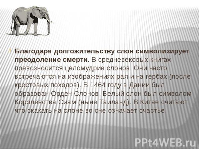 Благодаря долгожительству слон символизирует преодоление смерти. В средневековых книгах превозносится целомудрие слонов. Они часто встречаются на изображениях рая и на гербах (после крестовых походов). В 1464 году в Дании был образован Орден Слонов.…