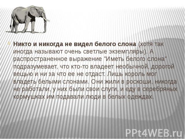 """Никто и никогда не видел белого слона (хотя так иногда называют очень светлые экземпляры). А распространенное выражение """"Иметь белого слона"""" подразумевает, что кто-то владеет необычной, дорогой вещью и ни за что ее не отдаст. Лишь король м…"""
