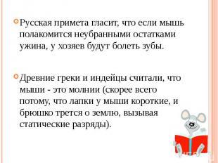 Русская примета гласит, что если мышь полакомится неубранными остатками ужина, у
