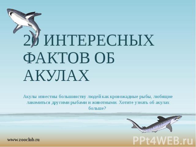 20 ИНТЕРЕСНЫХ ФАКТОВ ОБ АКУЛАХ Акулы известны большинству людей как кровожадные рыбы, любящие лакомиться другими рыбами и животными. Хотите узнать об акулах больше?