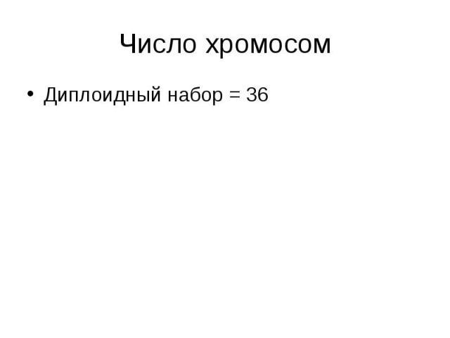 Диплоидный набор = 36 Диплоидный набор = 36