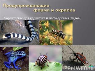 Характерны для ядовитых и несъедобных видов Характерны для ядовитых и несъедобны