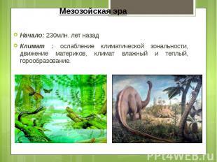 Мезозойская эра Начало: 230млн. лет назад Климат : ослабление климатической зона