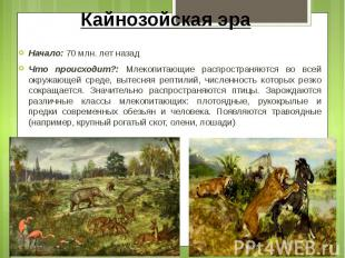 Кайнозойская эра Начало: 70 млн. лет назад Что происходит?: Млекопитающие распро