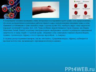 В популяциях человека проведены очень интересные исследования групп крови. Есть