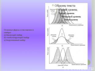 Основные формы естественного отбора: а) движущий отбор б) стабилизирующий отбор