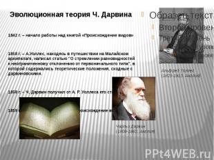 Эволюционная теория Ч. Дарвина 1842 г. – начало работы над книгой «Происхождение