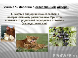 Учение Ч. Дарвина о естественном отборе: 1. Каждый вид организма способен к неог