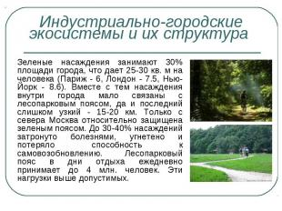 Зеленые насаждения занимают 30% площади города, что дает 25-30 кв. м на человека