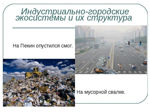 На Пекин опустился смог. На мусорной свалке.