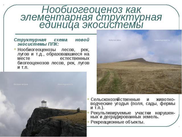 Структурная схема новой экосистемы ППК: Структурная схема новой экосистемы ППК: Нообиогеоценозы лесов, рек, лугов и т.д., образовавшиеся на месте естественных биогеоценозов лесов, рек, лугов и т.п.