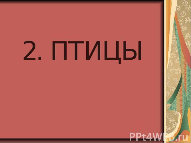 2. ПТИЦЫ