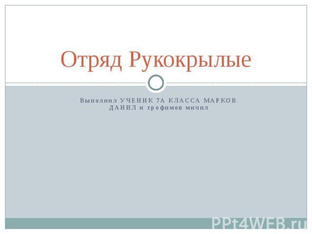 Отряд Рукокрылые Выполнил УЧЕНИК 7А КЛАССА МАРКОВ ДАНИЛ и трофимов мичил