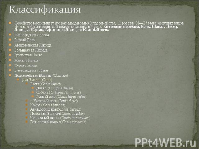 Семейство насчитывает (по разным данным) 3 подсемейства, 11 родов и 31—37 ныне живущих видов. Из них в России водится 8 видов, входящих в 4 рода: Енотовидная собака, Волк, Шакал, Песец, Лисицы, Корсак, Афганская Лисица и Красный волк. Семейство насч…
