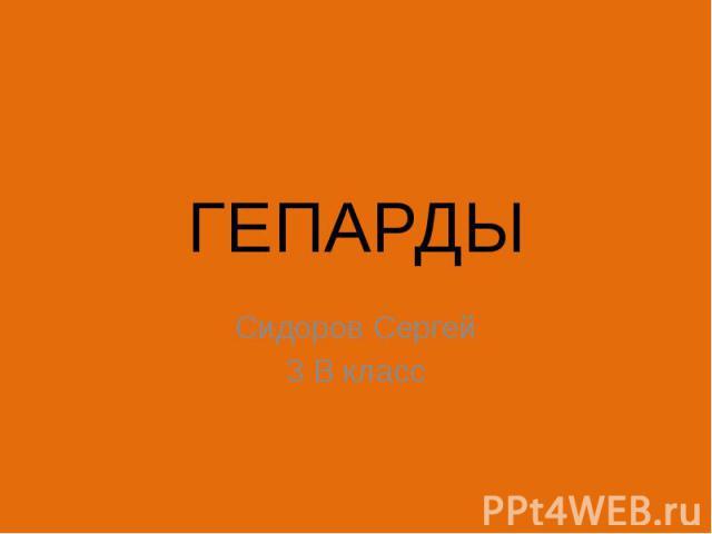 ГЕПАРДЫ Сидоров Сергей 3 В класс