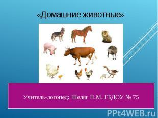 Учитель-логопед: Шеляг Н.М. ГБДОУ № 75 «Домашние животные»