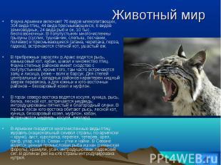 Фауна Армении включает 76 видов млекопитающих, 304 вида птиц, 44 вида пресмыкающ
