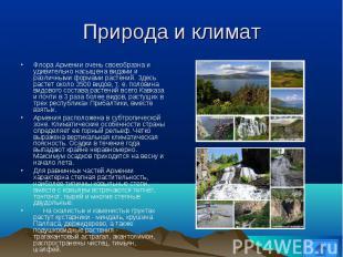 Флора Армении очень своеобразна и удивительно насыщена видами и различными форма