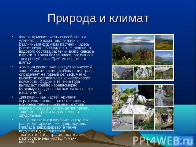 Флора Армении очень своеобразна и удивительно насыщена видами и различными формами растений. Здесь растет около 3500 видов, т. е. половина видового состава растений всего Кавказа и почти в 3 раза более видов, растущих в трех республиках Прибалтики, …
