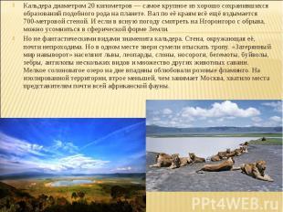 Кальдера диаметром 20 километров — самое крупное из хорошо сохранившихся образов