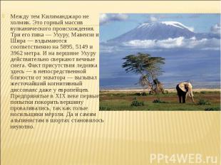 Между тем Килиманджаро не холмик. Это горный массив вулканического происхождения