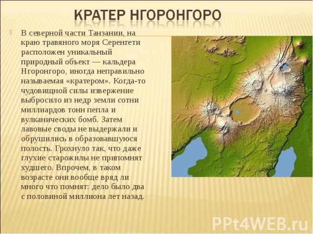 В северной части Танзании, на краю травяного моря Серенгети расположен уникальный природный объект — кальдера Нгоронгоро, иногда неправильно называемая «кратером». Когда-то чудовищной силы извержение выбросило из недр земли сотни миллиардов тонн пеп…