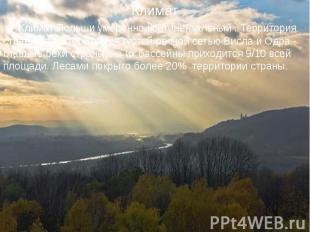 Климат Польши умеренно континентальный . Территория страны характеризуется густо