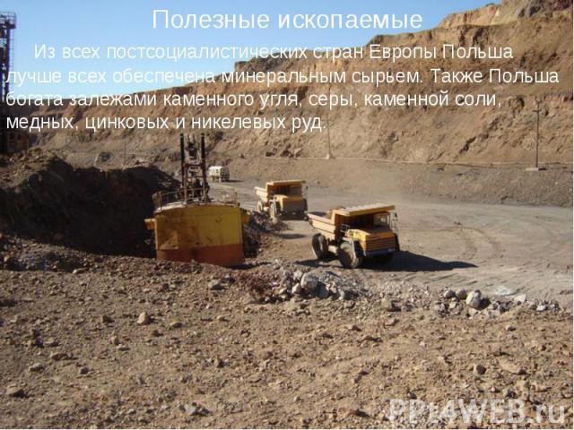 Из всех постсоциалистических стран Европы Польша лучше всех обеспечена минеральным сырьем. Также Польша богата залежами каменного угля, серы, каменной соли, медных, цинковых и никелевых руд. Из всех постсоциалистических стран Европы Польша луч…