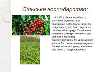Сільське господарство: У 1959 р. Земля перейшла у власність держави. 50% експорт