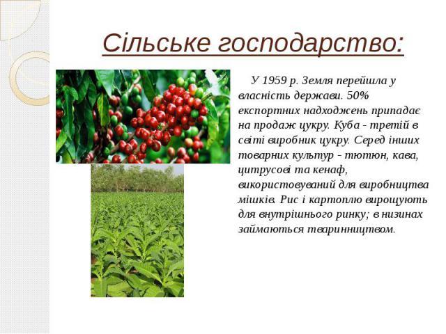 Сільське господарство: У 1959 р. Земля перейшла у власність держави. 50% експортних надходжень припадає на продаж цукру. Куба - третій в світі виробник цукру. Серед інших товарних культур - тютюн, кава, цитрусові та кенаф, використовуваний для вироб…