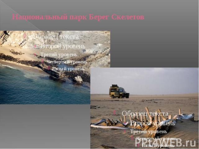 Национальный парк Берег Скелетов
