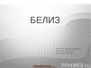 БЕЛИЗ Выполнил: Алфёров Владислав Ученик 10 «В» класса МОУ лицея «МОК №2»