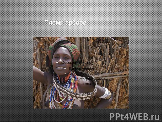 Племя арборе