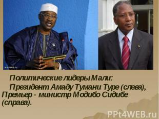 Политические лидеры Мали: Политические лидеры Мали: Президент Амаду Тумани Туре