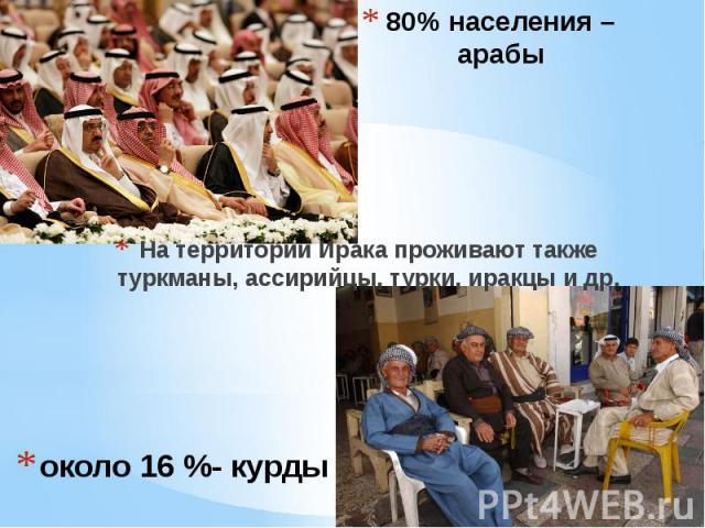 около 16 %- курды