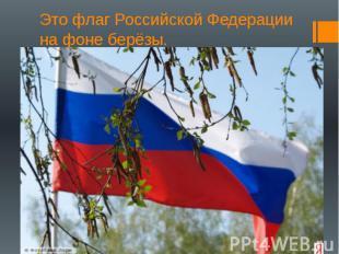 Это флаг Российской Федерации на фоне берёзы.