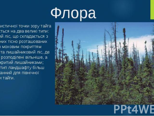 Флора З флористичної точки зору тайга поділяється на два великі типи: закритий ліс, що складається з численних тісно розташованих дерев з моховим покриттям ґрунту, та лишайниковий ліс, де дерева розподілені вільніше, а ґрунт вкритий лишайниками; дру…