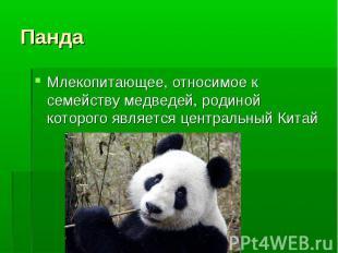 Млекопитающее, относимое к семейству медведей, родиной которого является централ